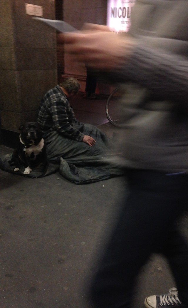 Homeless man, dog and man walking past