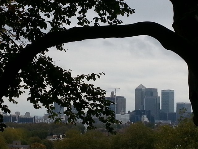 The city from the perspective of a tree in Greenwich Park