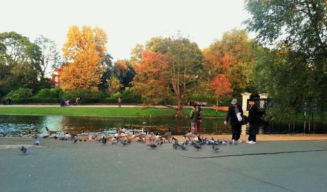 Regents Park 6